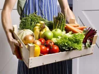 Перевозка овощей и фруктов: правильные условия транспортировки