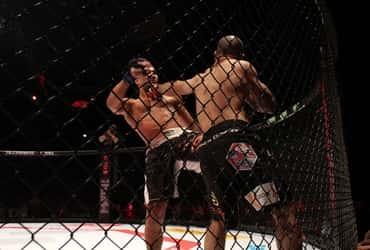 «ТаксовичкоФ» и «ГрузовичкоФ» поддержали турнир по MMA
