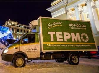 Перевозка замороженных продуктов: предъявляемые требования и особенности транспортировки