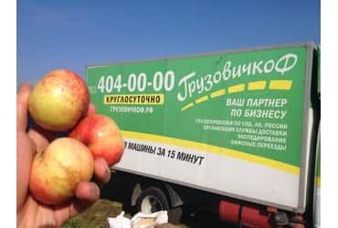 «ГрузовичкоФ» стал «яблочным» спонсором